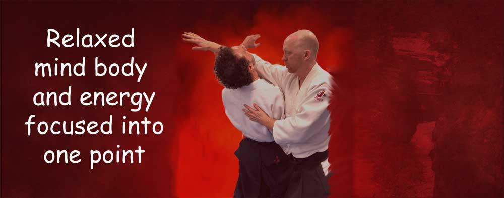 Aikido Durham Banner